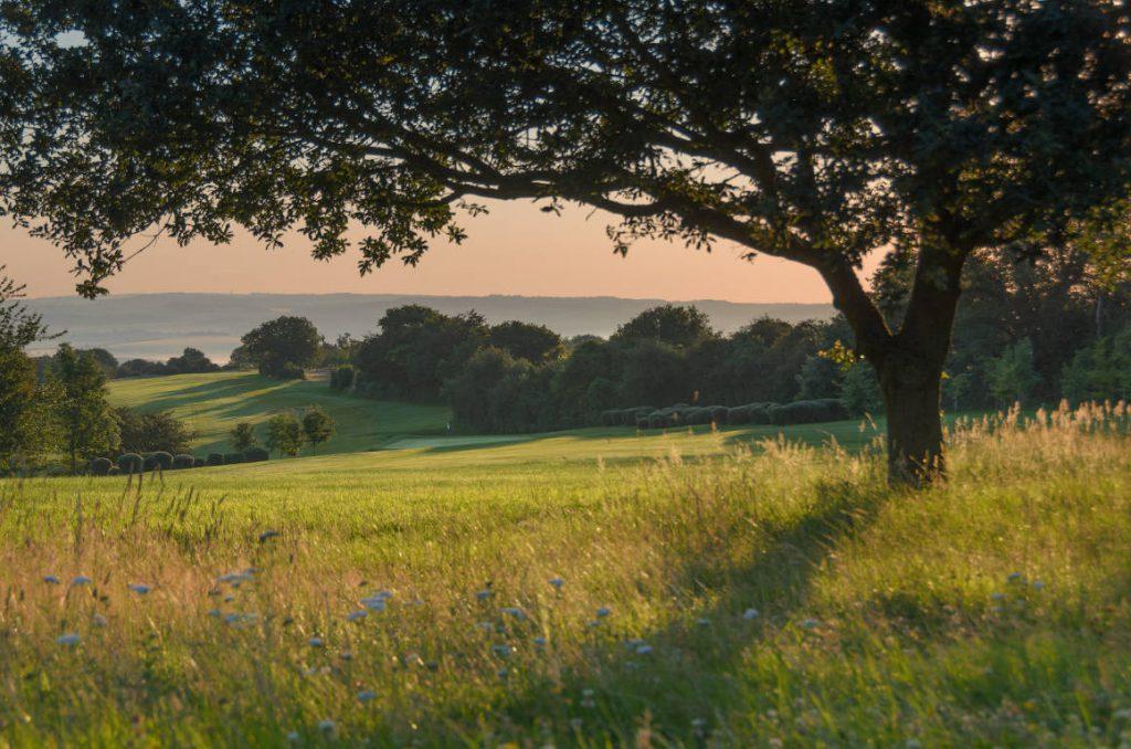 Hole 14 Goring and Streatley Golf Club