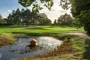 Goring and Streatley GC Hole 8